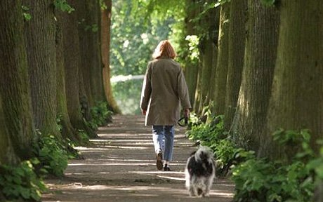 dog_walk_1249936a-1