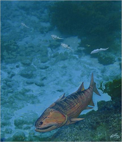 obfish-500